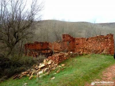 Cañón Caracena; Encina  Valderromán; viaje de semana santa amigos senderistas viaje de grupo